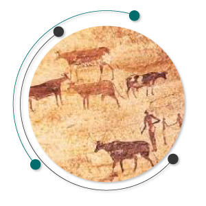 تاریخچه دامپروری و حیوانات اهلی